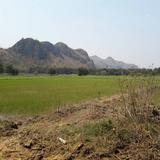 ขายที่ดิน จ.กาญจนบุรี เนื้อที่ 146 ไร่ 3 งาน 34 ตาราวา วิวภูเขา