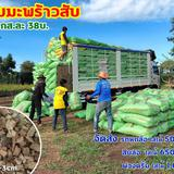 🌴🌴 จำหน่าย สับมะพร้าว ราคา ปลีก ส่ง 🌴🌴
