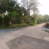 ขาย ที่ดิน โครงการมวกเหล็ก พาราไดซ์ รีสอร์ท 380 ตร.วา ติด Lake วิวภูเขา เหมาะทำบ้านพักตากอากาศ
