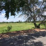 ขายที่ดินติดถนน เนื้อที่ 5-2-98 ไร่ ทำเลดี อยู่ไม่ไกลแหล่งชุมชน จ.ราชบุรี