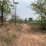 ขายที่ดินเปล่า จังหวัดอุดรธานี อยู่บนถนนมิตรภาพ เนื้อที่ 52 ไร่ 40 ตารางวา
