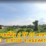ขายด่วน! ที่ดินแปลงสวยๆติดแม่น้ำโขงที่ดินโฉนด2ไร่ 20ตารางวาบ้านท่ามะเฟือง อ.ท่าบ่อจ.หนองคาย #ที่ดิน