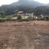ขายที่ดินแปลงสวย ทำเลดี วิวธรรมชาติ บ้านปง อ.หางดง จ.เชียงใหม่