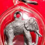 ช้างรุ่นแรกหลวงพ่อปรีชา วัดเขาอิติสุคโต หัวหิน