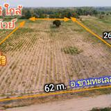 #ขายที่ดินถูกกว่าชาวบ้าน 10 ไร่ @250,000 บ. | บึงอ้อ อ.ขามทะเลสอ |  กว้าง 62 ม. ถมแล้ว