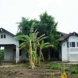 ขาย ที่ดิน 822 ตรว ถนน 345 ถนนราชพฤกษ์ ซอยวังข่า 4 เหมาะสร้างคลังสินค้า ออฟฟิศ บ้านพักอาศัย
