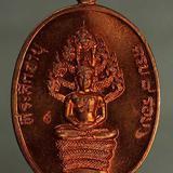 เหรียญ หลวงปู่ทิม ปรกแปดรอบ เนื้อทองแดง  j112