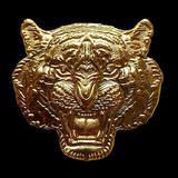 เหรียญหน้าเสือ หลวงพ่อพัฒน์ รุ่น พยัคฆ์๕แผ่นดิน วัดธารทหาร(ห้วยด้วน)
