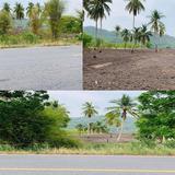 (ขายที่ดิน แก่งคอย) สระบุรี 30 ไร่ เศษ หน้ากว้าง 45 เมตร ติดถนนใหญ่ ใกล้สถานที่ท่องเที่ยวและรีสอร์ทหลายแห่ง