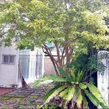 ขายเช่า บ้านเดี่ยว 2 ชั้น เนื้อที่ 56 ตารางวา หมู่บ้านไทยศิริเหนือ ทาวน์อินทาวน์