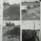 ขายที่ดินในอำเภอโชคชัย จังหวัดนครราชสีมา เนื้อที่ 22 ไร่ 61 ตารางวา เป็นที่ดินว่างเปล่า ติดถนนสองด้าน ราคาเสนอขายไร่ละ 3