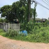 ขายที่ดินติดถนนลำลูกกาคลอง13 200ตรว