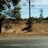 ขายที่ดินติดถนนนาส่วง-นาเยีย (ทล2213) ใกล้สี่แยกไฟแดงนาส่วง ตรงข้ามรร.บ้านนาส่วง