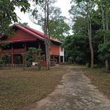 ขาย บ้านสวนจอมปิง ลำปาง บ้านเดี่ยวไม้สักใต้ถุนสูง 2 ห้องนอน 2 ห้องน้ำ  พร้อมสวนลำไย พื้นที่รวม 5 ไร่