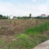 ขายที่ดินเปล่าทำเลดีติดถนนใหญ่เลี่ยงเมืองพิษณุโลก 12ไร่ 3งาน 64ตร.วา