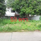 ขาย ที่ดินเปล่า 2 แปลง บางละมุง พัทยา ชลบุรี