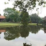 ขายที่ดินพร้อมเรือนไทย ริมน้ำ 16 ไร่ บางไทร พระนครศรีอยูธยา
