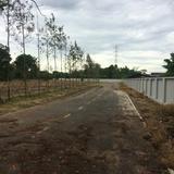 ขายที่ดินพร้อมสวนติดลำธารโฉนด ปากช่อง ไม่ไกลถนนใหญ่อีกด้วย มีน้ำตลอดปี ทำเลเยี่ยมยอด