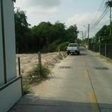 Sale of land plot 220 sqw. Or about 880 sqm.