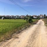 ขาย ที่ดิน 300 ตรว พุทธมณฑลสาย 5 แปลงสี่เหลี่ยม เหมาะสร้างบ้านอยู่อาศัย