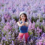 I love flower Farm จ.เชียงใหม่