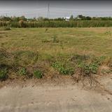 74980 - ขาย ที่ดิน 2 ไร่ บางกรวย-ไทรน้อย เลียบคลองลำลี หมู่ 12 บางบัวทอง-สุพรรณบุรี เหมาะทำโรงงาน