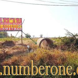 ขายที่ดินน่าลงทุน ถ.ชัยภูมิ-สีคิ้ว อ.เมืองชัยภูมิ จ.ชัยภูมิ รูปเล็กที่ 1