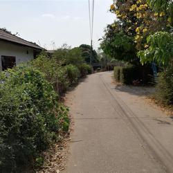 SS159ขายบ้านพร้อมที่ดิน114ตรว.ติดทางสาธารณประโยชน์ ที่เข้ามา รูปเล็กที่ 3