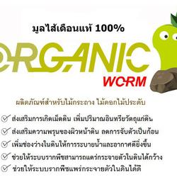 มูลไส้เดือนแท้ 100% ตรา Organic Worm รูปเล็กที่ 2
