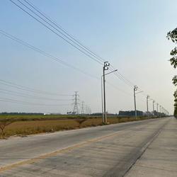 S301 ที่ดินแบ่งขายราคาถูก ขนาด 10 ไร่ ไทรน้อย นนทบุรี ราคา 4 ล้านบาท/ไร่ รูปเล็กที่ 5