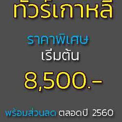 ทัวร์เกาหลี โซล 5 วัน 3 คืน ราคา 8500 บาท รูปเล็กที่ 1