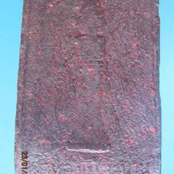 1104 สมเด็จผงว่านรุ่นแรก หลังเสาหลักเมือง จังหวัด น่าน ปี 25 รูปเล็กที่ 2