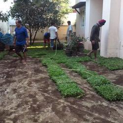 ขายหน้าดิน ถมที่ ถมดิน เสริมหน้าดิน สำหรับจัดสวน ปลูกหญ้า ปลูกต้นไม้ เกรดA ราคาถูก รูปเล็กที่ 3