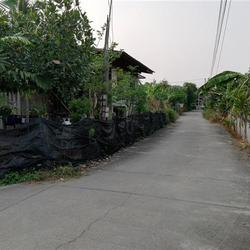 SS163ขายบ้านเก่าในที่ดิน63ตรว.ติดทางสาธารณประโยชน์ถึงสองด้าน รูปเล็กที่ 1