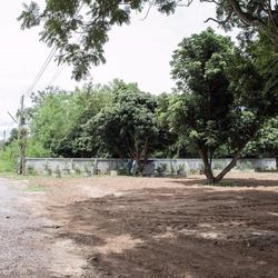 SRP01ขายที่สวนผลไม้2-2-05.7ไร่ติดทางสาธารณประโยชน์ที่เชื่อมก รูปเล็กที่ 3