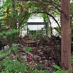 ให้เช่าที่ดินสภาพมีต้นไม้ปกคลุมเต็มติดถนนในซอย ร้อยวา เหมาะท รูปเล็กที่ 4