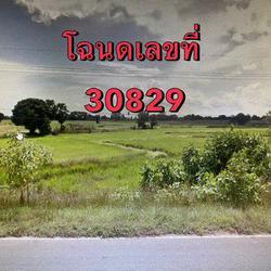 ขายที่ดินเปล่า ติดถนนหมายเลข 2069 จังหวัดชัยภูมิ เนื้อที่ 64 ไร่ 1 งาน 72 ตารางวา รูปเล็กที่ 1
