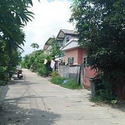 ย่านถนนเทพารักษ์-หนามแดง-สำโรง พร้อมต้นมะม่วงใหญ่หลายสิบปี ร รูปเล็กที่ 6