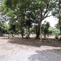 SRP01ขายที่สวนผลไม้2-2-05.7ไร่ติดทางสาธารณประโยชน์ที่เชื่อมก รูปเล็กที่ 5