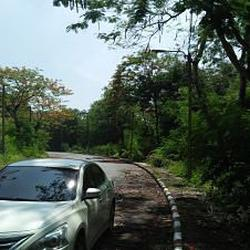 Land for Sale Suitable for House not far Airport within Roya รูปเล็กที่ 3