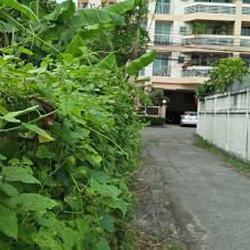 ให้เช่าที่ดินสภาพมีต้นไม้ปกคลุมเต็มติดถนนในซอย ร้อยวา เหมาะท รูปเล็กที่ 5