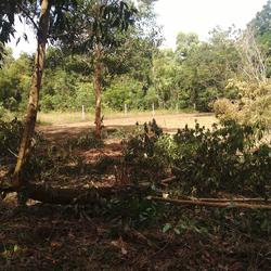 Land near sea for sale very nice zone for retirement  รูปเล็กที่ 1