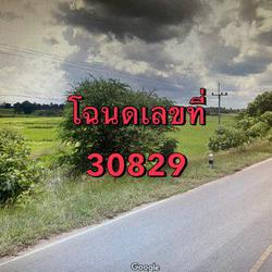 ขายที่ดินเปล่า ติดถนนหมายเลข 2069 จังหวัดชัยภูมิ เนื้อที่ 64 ไร่ 1 งาน 72 ตารางวา รูปเล็กที่ 2