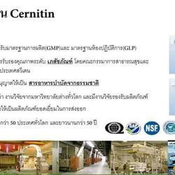 CERNILTON เซอร์นิลตัน (สีน้ำตาล),ผลิตภัณฑ์เสริมอาหารสกัดชนิด รูปเล็กที่ 3