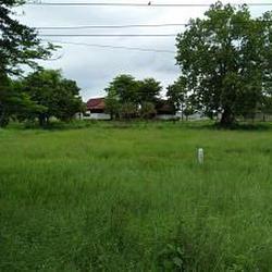 ที่ดิน แปลงใหญ่  อำเภอท่าม่วง กาญจนบุรี เนื้อที่ 446 ไร่  รูปเล็กที่ 4