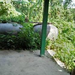ที่ดินสวนป่าธรรมชาติติดลำคลอง ร่มรื่น บรรยากาศชานเมือง โฉนด  รูปเล็กที่ 4