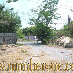 ขายด่วน ที่ดิน ซ.ลำโพ 33 ถ.บ้านลำโพ-วัดศรีเขตนันทาราม รูปเล็กที่ 3