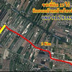 ขายที่ดินไทรน้อย 12 ไร่ เขตบางบัวทอง นนทบุรี ติดถนนบ้านกล้วย-ไทรน้อย เส้น 1013 อยู่ในเขตพื้นที่สีเหลือง เห รูปเล็กที่ 1