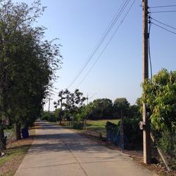 ขายที่ดินเปล่า 11 ไร่ 12 ตารางวา สามโคก-เสนา ปทุมธานี ใก้ลถนนวงแหวนตะวันตก รูปเล็กที่ 6