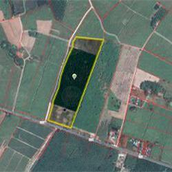 ขายที่ดิน อำเภอบ่อทอง จังหวัดชลบุรี ติดถนนสาย 3340 รูปเล็กที่ 1
